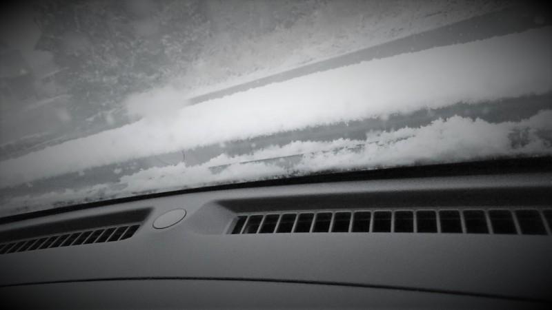 高知だって雪が積もるさ