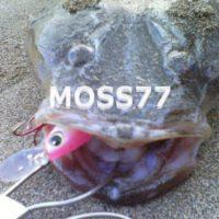 MOSS77